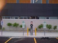 ChargePoint station installed in Ottawa. - Photo